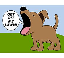 Get Off My Lawn Photographic Print