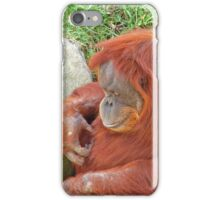 Orangutan at the Zoo iPhone Case/Skin