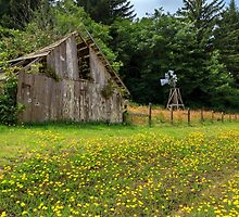 Windmill Flowers And A Barn by James Eddy