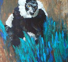 Primate Of The Madagascan Rainforest by Margaret Saheed