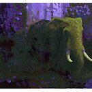 Elephant 25 by David  Kennett