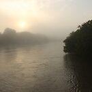 Foggy Morn on the Assiniboine River by Stephen Thomas