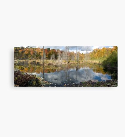 Beaver Pond in Gatineau Park Canvas Print