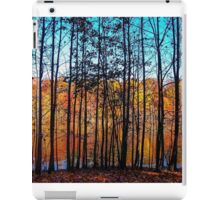 Thru Trees Landscape iPad Case/Skin