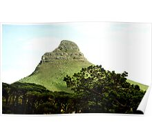 Lion's Head from Table Mountain, Cape Town Poster