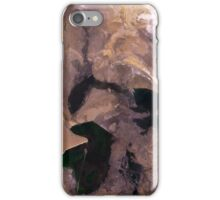 Amu Darya River Delta and South Aral Sea Satellite Image iPhone Case/Skin
