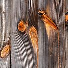 Weathered Wood Siding by Kenneth Keifer