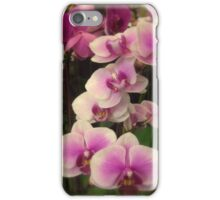 Purple Orchids for My Love iPhone Case/Skin