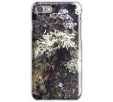 Wet Moss iPhone Case/Skin