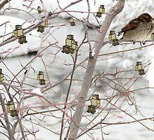 Winter Hangouts by potatopanda
