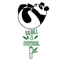 Balance Is Everything! Tumbling panda. Photographic Print