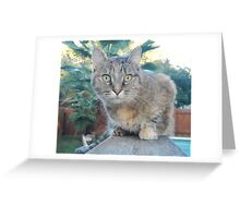 Prisca on the Hunt Greeting Card