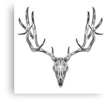 Deer Skull Animal Line Art Canvas Print