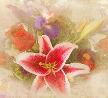A Gentle Wish by Susan Werby