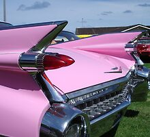 Pink Fins by Cyclorama