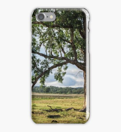 Lone Tree in the Morning iPhone Case/Skin