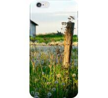 Spring Evening iPhone Case/Skin