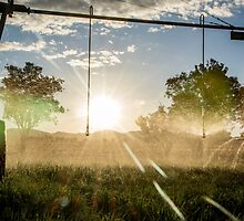 Irrigation Sunset 2 by Candice O'Neill