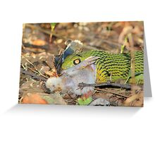 Tree-Snake Dinner - Nature's Cycle of Life Greeting Card