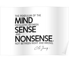 sense and nonsense - carl jung Poster