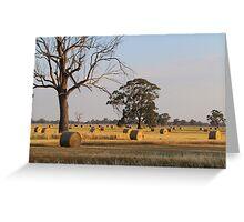 Rural Australia Greeting Card