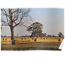 Rural Australia Poster