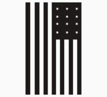 Black Flag 12 Stars black american by bentoz