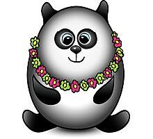Panda traveler isolated character Photographic Print