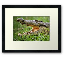 That's Close Enough!! Framed Print