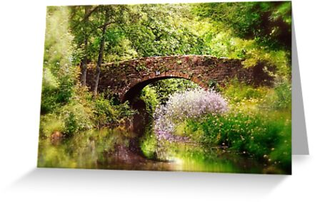 A summers dream by Lyn Evans