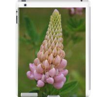 Lupin iPad Case/Skin