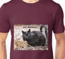 """""""Head-Bent"""" Pussy Rue (hidden behind a stone !), And I in birds tuned! but not in the same place for I  5 (t) by Olao-Olavia / Okaio Créations  by fz 1000 2014 Unisex T-Shirt"""
