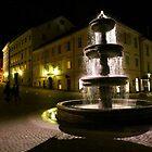The fountain by annalisa bianchetti
