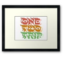 lsd trip magic mushrooms hippie hippies psychedelic drugs party trance rock techno freedom festival t shirts Framed Print