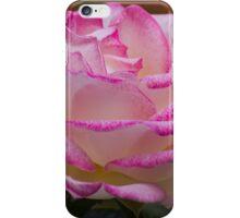 roses in the garden iPhone Case/Skin