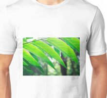 Branch ailanthus with narrow leaves Unisex T-Shirt