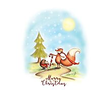 The Hedgehog and the Fox at Christmas Photographic Print