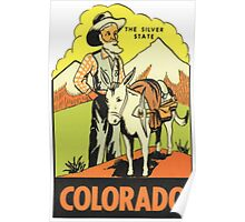 Colorado CO State Vintage Travel Decal Poster