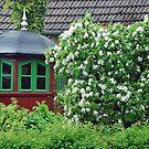Breege- Island Ruegen - Germany by Arie Koene