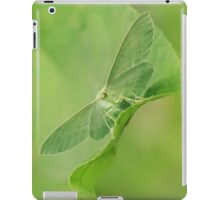 Green moth iPad Case/Skin