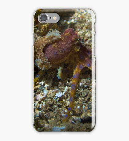 Blue ring octopus iPhone Case/Skin