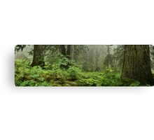 Primeval forest Canvas Print