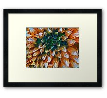 Farewell Sweet Dahlias Framed Print