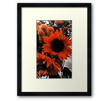 Sparkle Drop  Framed Print