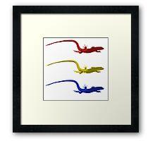 Triple Lizard Framed Print