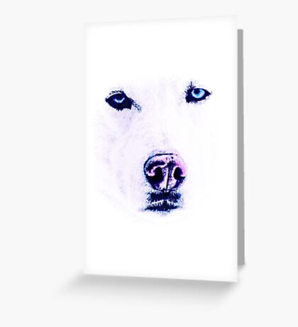 White Husky with Blue Eyes Greeting Card