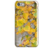 Autumn Visitor iPhone Case/Skin