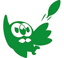Rowlet Green Photographic Print