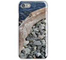 The Boat's Worst Enemy iPhone Case/Skin