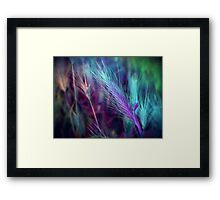 BLUE AND LILAC FEATHERY FERN  Framed Print